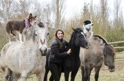 jeune fille chevaux, chiens, dog dancing