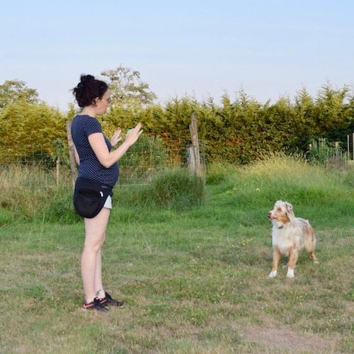 faire reculer un chien en dog dancing