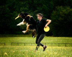 Une jeune fille lance un frisbee jaune à son chien
