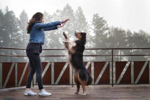 Une jeune fille fait danser son chien