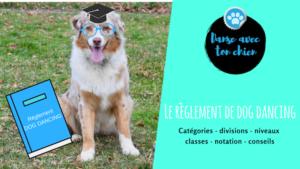 photo d'un chien avec des lunettes et un livre