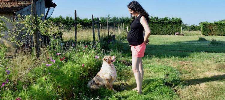 la révélation de ma grossesse, dog dancing, 2ème trimestre