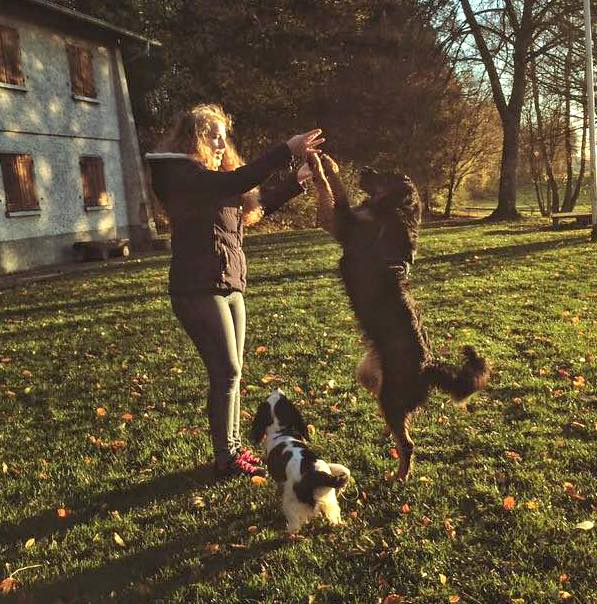 Howavart et sa maitresse, dog dancing danse avec ton chien