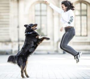 du canicross au dog dancing