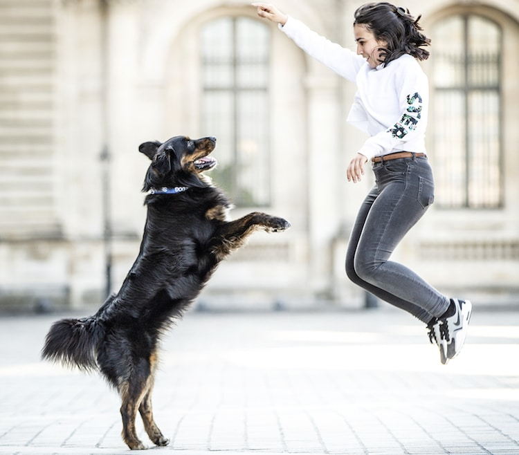 Mélanie & Moogly – Du canicross au Dog Dancing!