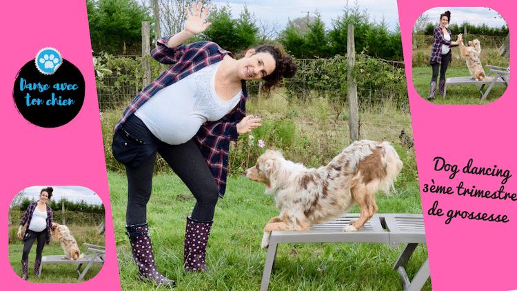 Dog dancing pendant mon dernier trimestre de grossesse et après?