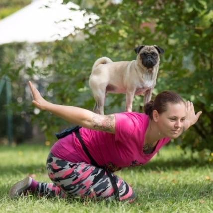 laetitia et nerver, carlin de dog dancing, membres de danse avec ton chien