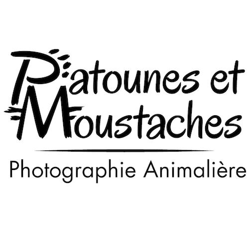 Patounes et Moustaches, retouches photo, logo
