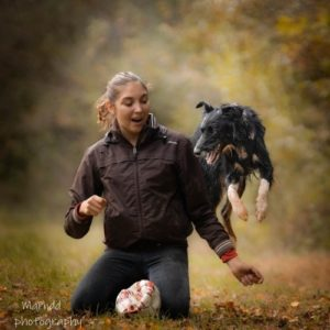 dog dancing avec border collie