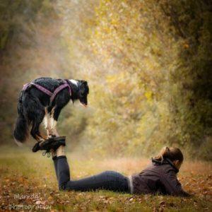 bordercollie sur les pieds dogdancing tricks