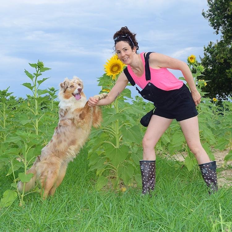 bien utiliser le clcker dans l'éducation positive du chien