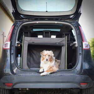 Transport en caisse dans le coffre de la voiture