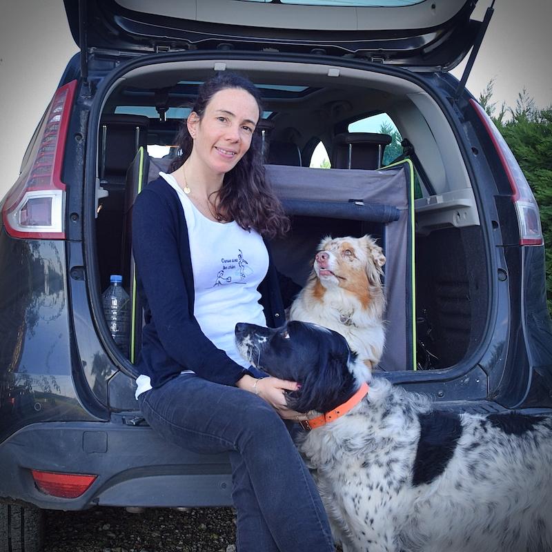en voiture avec mon chien bien-être et sécurité
