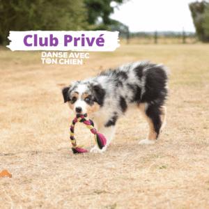 Club privé Danse avec ton chien