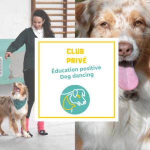 Club privé de dog dancing en ligne
