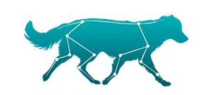logo cynoptopia