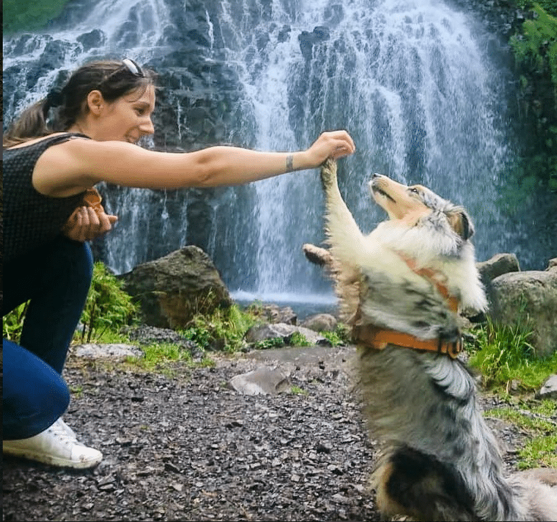 tuto apprendre le chien à contourner avec stephanie et Missi