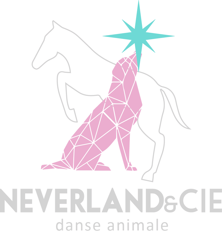 Association Neverland et cie