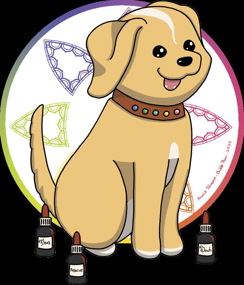 logo chien collier pierre