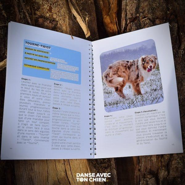 intérieur livre pour apprendre le dog dancing
