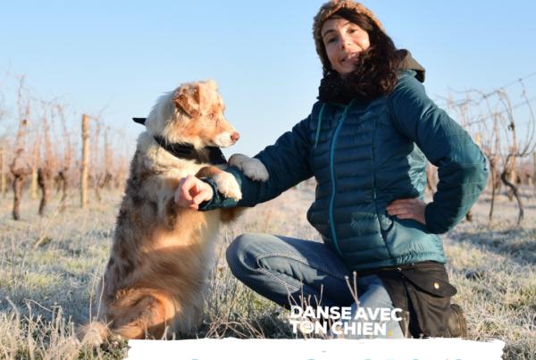 top 5 des Podcasts de Danse avec ton chien