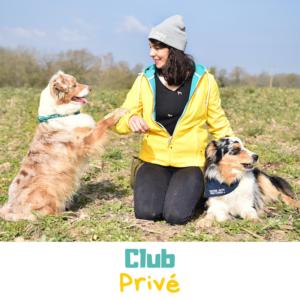 Club privé de dog dancing
