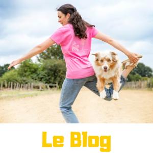 Le blog de dog dancing