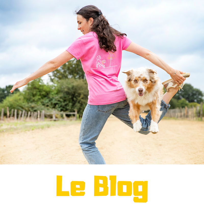 Le blog de dog dancing