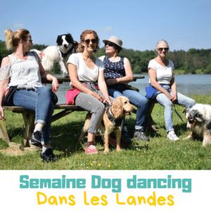 semaine dog dancing dans les Landes