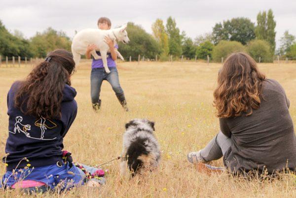 Lola Ledoux pour le tome 2 de Danse avec ton chien
